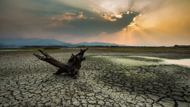 timelapse:cracked earth near dry lake in dry season