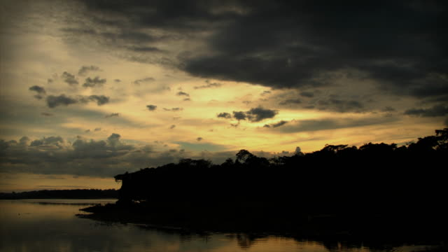 timelapses tambopata madre de dios peru - tambopata stock videos and b-roll footage