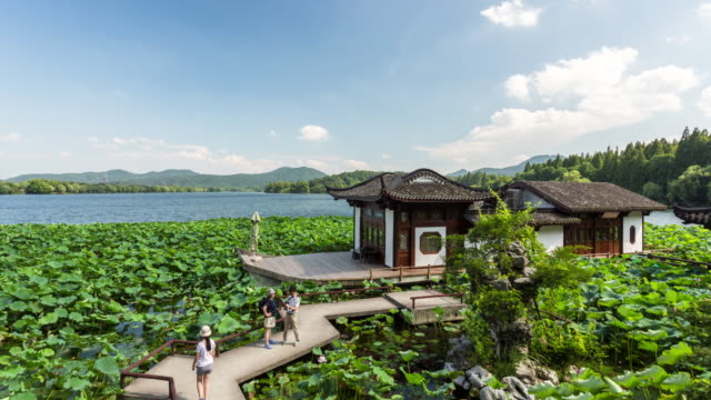 4k time-lapse:the marble boat surrounded by sacred lotus on the west lake against blue sky and white clouds,hangzhou,china - sacred lotus stock videos and b-roll footage