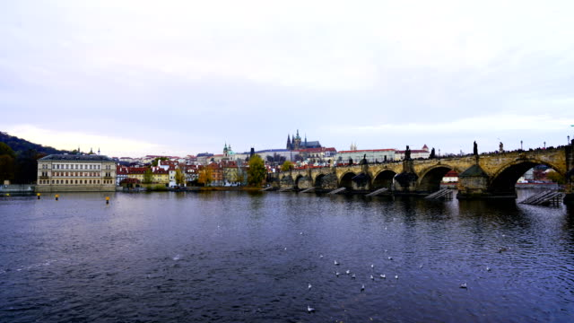 time-lapse:vltava river and charles bridge in prague - river vltava stock videos & royalty-free footage