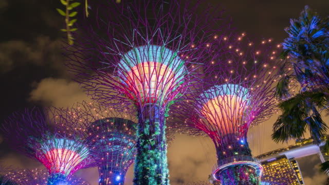 4k timelaspe: supertree garden at night. - singapore stock videos & royalty-free footage