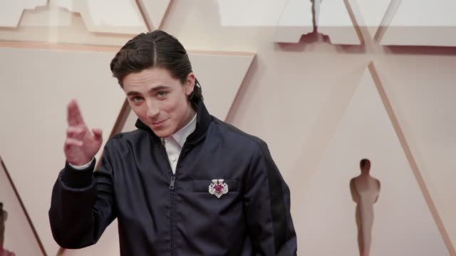 slomo timothée chalamet at dolby theatre on february 09 2020 in hollywood california - academy awards stock videos & royalty-free footage