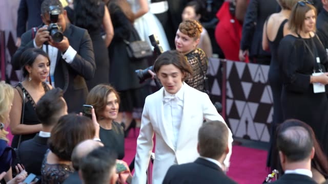 stockvideo's en b-roll-footage met timothée chalamet at dolby theatre on march 04, 2018 in hollywood, california. - academy awards
