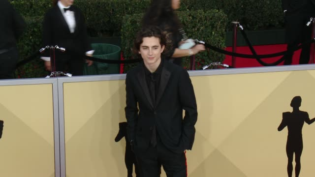 Timothée Chalamet at the 24th Annual Screen Actors Guild Awards at The Shrine Auditorium on January 21 2018 in Los Angeles California