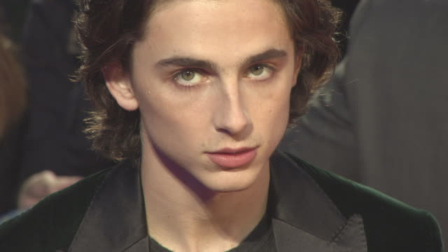 timothee chalamet at 'call me by your name' uk premiere 61st bfi london film festival at odeon leicester square on october 09 2017 in london england - call me by your name stock videos and b-roll footage