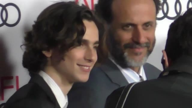 timothee chalamet luca guadagnino morgan saylor and michael stuhlbarg at the screening of 'call me by your name' at afi fest 2017 presented by audi... - call me by your name stock videos & royalty-free footage