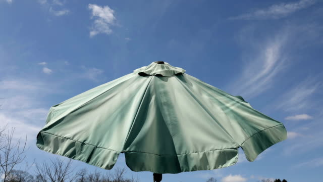 110581411 80 Top Green Umbrella Video Clips & Footage - Getty Images