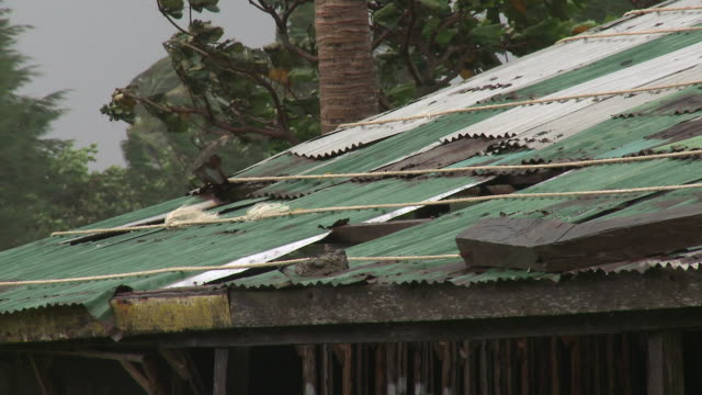 tin roof of hut blows damaged in strong winds from typhoon. super typhoon megi or juan, ne luzon, philippines oct 2010 / audio - record breaking stock videos & royalty-free footage