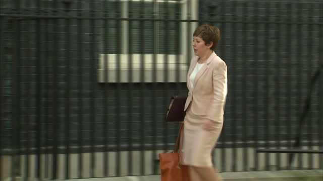 tina stowell baroness stowell of beeston leader of the house of lords arrives to number 10 downing street - baroness stock videos & royalty-free footage