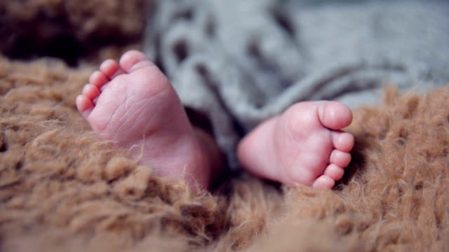 tiny foot of newborn baby - toe stock videos & royalty-free footage