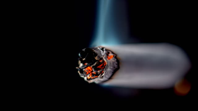 slo mo ld tip of a burning cigarette - cigarette stock videos & royalty-free footage