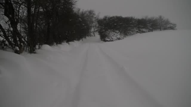 Tire tracks cross a snowy field In Germany.
