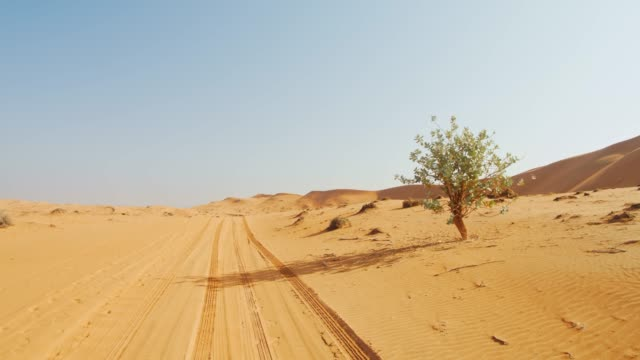 pov tire tracks in the desert of oman - tire track stock videos & royalty-free footage