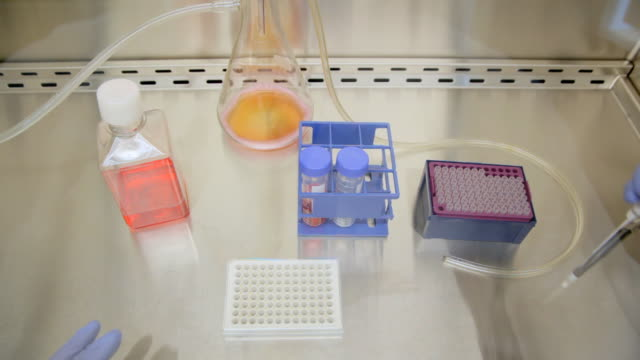 tissue culture hood experiment - separating laboratory stock videos and b-roll footage