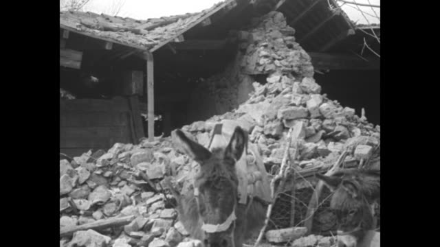 "face famine after balkan quake wipes out 20 towns southern serbia devastated by disaster which killed 200 and injured thousand"" / earthquake... - serbia stock-videos und b-roll-filmmaterial"