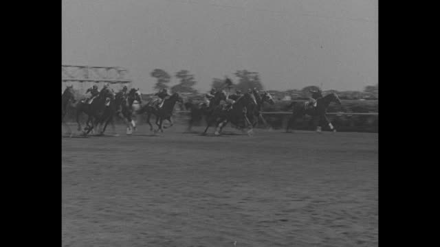 """turf classic ends in dead heat"""" / title: """"chicago, ill."""" superimposed over crowds at arlington park race track in arlington heights, il / crowds line... - スポーツの判定員点の映像素材/bロール"""