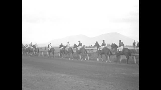 """""""amazing speed of australian wonder horse thrills fans - phar lap gallops away with $50,000 feature at agua caliente, mex"""" / two shots of crowd... - agua点の映像素材/bロール"""