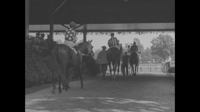 at the saratoga races / crowd in grandstand from behind crowd on ground and along track fence / grandstand dining room waiters at full tables /... - dining room stock videos & royalty-free footage