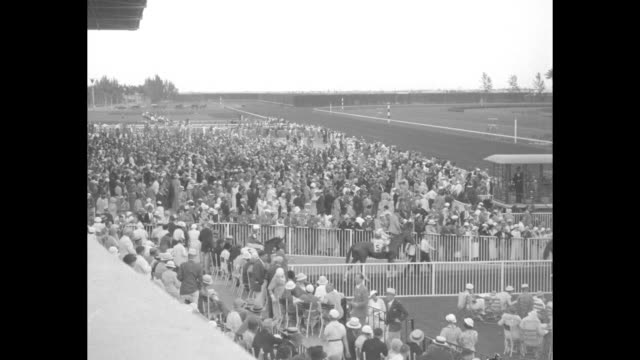 banner racing season looms in dixieland exciting turf meet at hialeah park brings out flock of society fans / two shots of crowd outside race track /... - hialeah stock videos & royalty-free footage