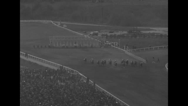 vídeos de stock, filmes e b-roll de by a nose stagehand wins santa anita race / high angle view of horses walking in a row on the track / fred astaire looks through binoculars / horses... - comentarista