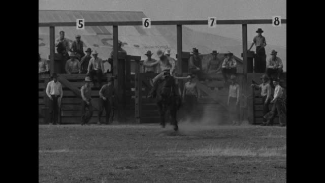 California superimposed over man riding bucking bronco out of chute close pan of same / wide shot another bronco with rider runs out of stall rider...