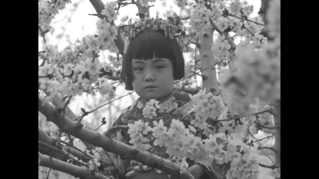 Capital Revels in Cherry Blossoms Washington Ambassador Debuchi of Japan with his family interprets spirit of Nippon's gift / Japanese Ambassador to...