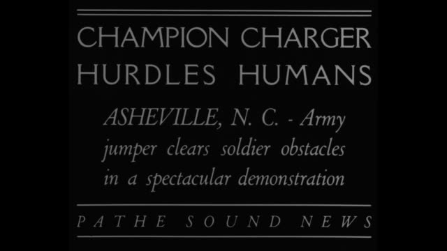 vidéos et rushes de champion charger hurdles humans asheville nc army jumper clears soldier obstacles in a spectacular demonstration / three men lay on cots and a horse... - table top view