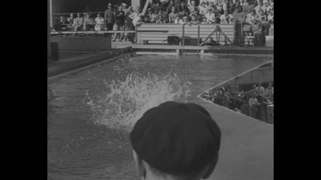 diving superimposed over wide shot of pool surrounded by crowded stands at berlin's summer olympics / mid shot man dives off board arches over... - breit stock-videos und b-roll-filmmaterial