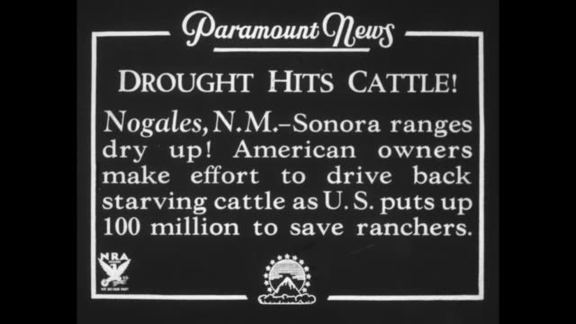 """""""drought hits cattle! nogales, nm - sonora ranges dry up! american owners make effort to drive back starving cattle as us puts up $100 million to... - new mexico stock videos & royalty-free footage"""