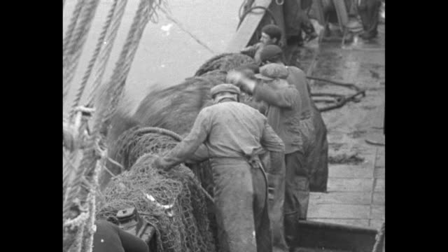 """vídeos de stock e filmes b-roll de """"editor's note: for years, ocean fishermen had to rush to port or carry huge stores of ice to save their catch. the sensational sacip process of... - peixe congelado"""
