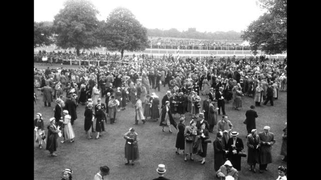 """title card """"elizabeth's horse wins at ascot"""" / tilt down large crowd of people milling about on grounds / tilt down queen elizabeth, philip and the... - ロイヤルアスコット点の映像素材/bロール"""