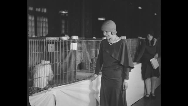 Felines Bask in Limelight New York Cats of high and low degree compete for honors at Atlantic show / VS woman in cloche hat walks alongside cages and...