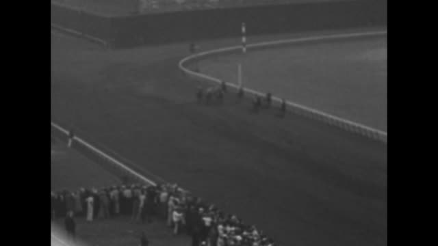 florida's derby day / high shot horses and jockeys parade around ring standing spectators watch / vs horses and jockeys parade on track / cu... - hialeah stock videos & royalty-free footage