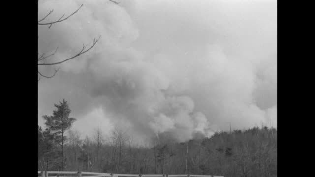 "flames near medfield, mass turn area into crackling inferno before spread is checked"" / thick smoke ascends above tree-lined / smoke and flames in... - wochenschau stock-videos und b-roll-filmmaterial"