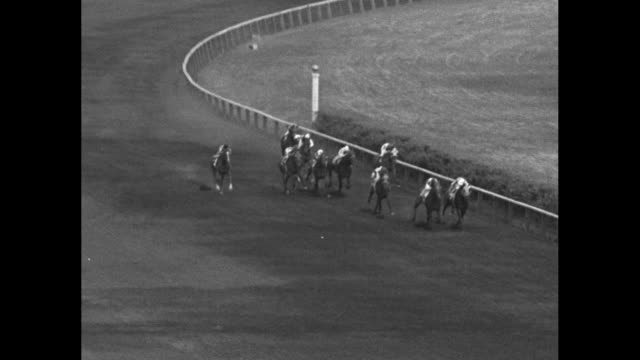 gallant granville superimposed on the running horses / a large crowd of people most in summer attire / the horses walk to the starting gate the race... - telephoto lens stock videos & royalty-free footage