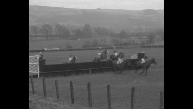 "vídeos de stock, filmes e b-roll de ""grand nat'l trials on cheltenham, eng. - spills fill thrilling national hunt! english jumpers fight it out for entry in greatest steeplechase"" /... - cheltenham"