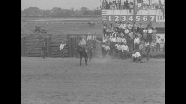hang on and pray bakersfield a sure cure for spring fever california rodeo season gets going as cowhands hit the dirt and the broncos jeer as usual /... - bocksprång bildbanksvideor och videomaterial från bakom kulisserna