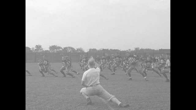harvard's football hopes / harvard crimson's team runs on field men envelop camera / vs calisthenics stretching side to side / crunches men pushing... - pushing stock videos & royalty-free footage