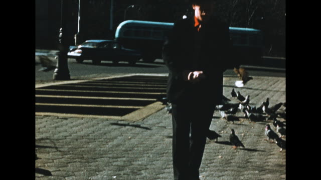 """""""january 29th 1960""""; man feeding pigeons on the sidewalk, cars pass by in the background - the cars stock videos & royalty-free footage"""
