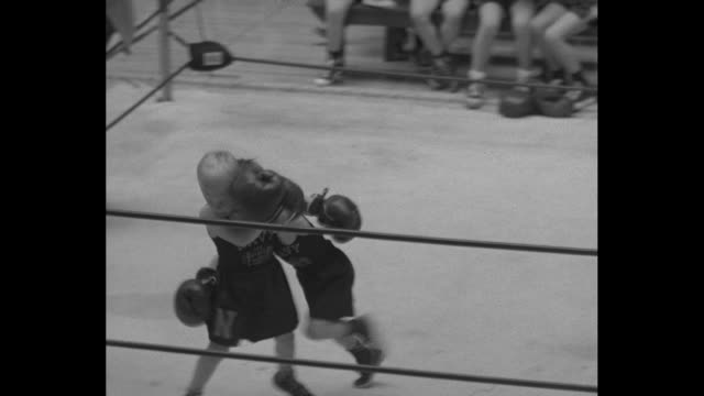 mighty mites make merry mitt mayhem superimposed over bunch of boys in boxing gloves / ms pan of young boy in boxing gloves and shorts / qs man at... - boxing ring stock videos & royalty-free footage