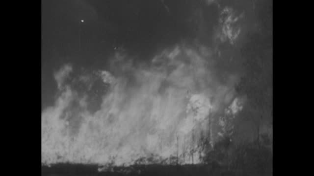 """news flashes!"" / aerial forest fire line and lots of smoke / mcu flames in brush and trees / mcu civilian conservation corps firefighters fight... - wochenschau stock-videos und b-roll-filmmaterial"