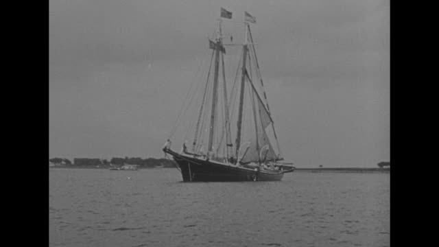 news flashes / shot of captain bob bartlett's schooner sailing in new york city harbor / close view of name effie m morrissey on side of schooner /... - effie stock videos and b-roll footage
