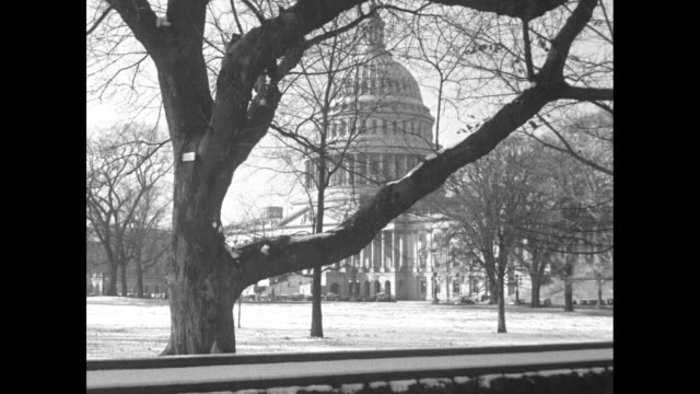 nra assures holiday joy to millions / snow on ground with us capitol building seen through tree branches / united states house of representatives in... - the end stock videos & royalty-free footage