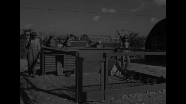 "vidéos et rushes de ""on guard! u.s. troops protect a britain-raised egg"" / vs company of african-american soldiers in formation / two black soldiers guard chicken coop... - soldat"