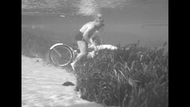 "vidéos et rushes de ""pedalers - amphibian cyclists picnic underwater"" / newton perry pedals bicycle on beach as edith allen rides on handlebars, carrying a picnic... - panier pique nique"
