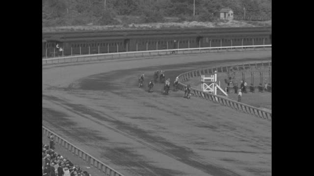 """""""racing's hard luck horse!"""" superimposed over face of horse / aerials of crowd at narragansett race course / horses walking to starting gate / race... - number 5 stock videos & royalty-free footage"""