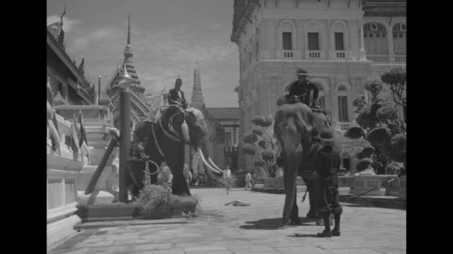 """rare films: siam crowns young king"" superimposed over phumiphon adunyadet - named rama ix after crowning - riding atop a palanquin with umbrellas... - thailand stock videos & royalty-free footage"
