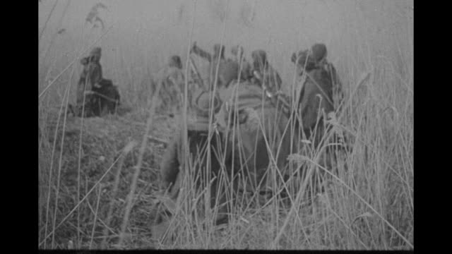 """red army pushes back nazis on kuban front"" / vs waving reeds; camouflaged tank; hidden gun; soviet soldier peers though sight of mortar; soldier... - 東ヨーロッパ民族点の映像素材/bロール"