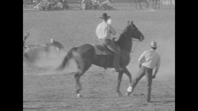 rodeo riders on rampage rarin' to go cowboys of the old west rally at tucson ariz / cowboys on bucking broncos being thrown off - bucking stock videos & royalty-free footage