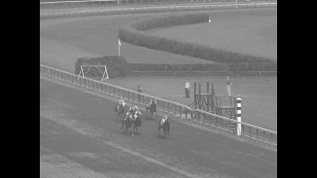 """skylarking to victory,"" fade in horse race / spectators, track in bg / looking down on horses parading to post / men talking / horses racing seen... - fade in video transition stock videos & royalty-free footage"